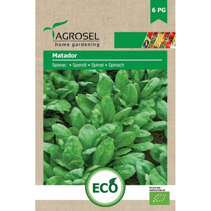 Semințe BIO spanac Matador - 6 g