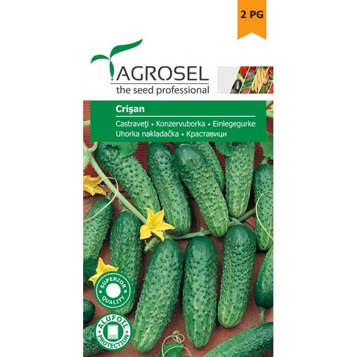 Semințe castraveți Crișan