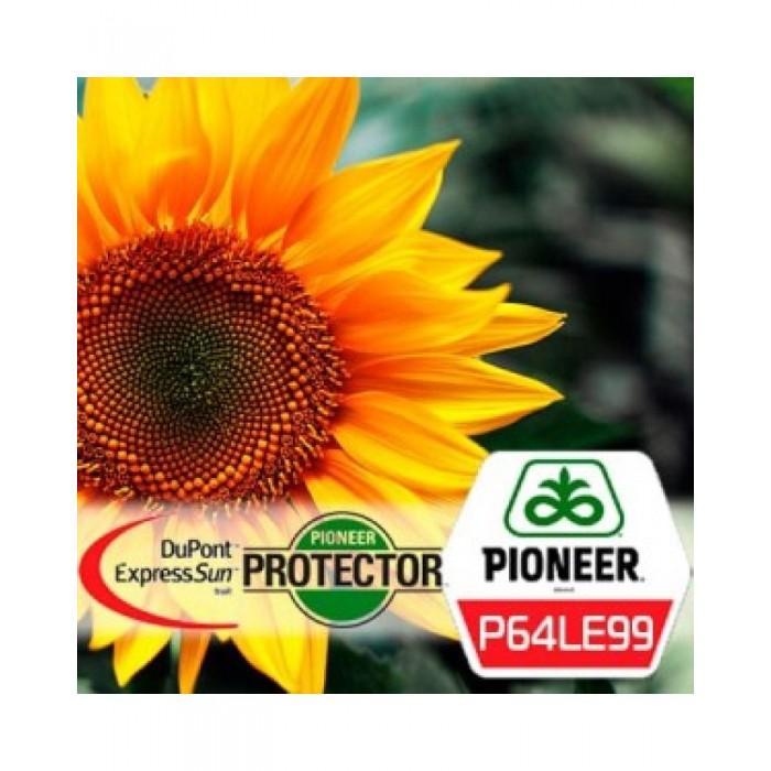 Semințe floarea soarelui Pioneer P64LE99